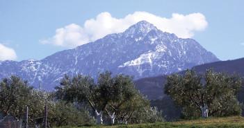 Святая-гора-Афон