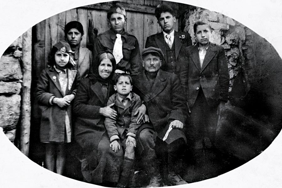 Семья Арсения