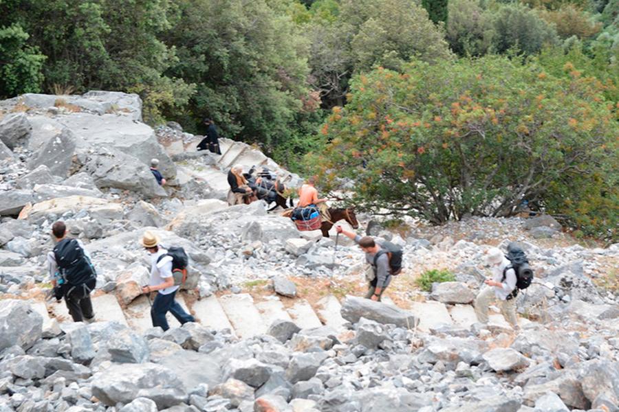 Подъем на вершину Святой Горы Афон
