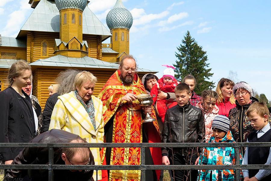 Посадка сакуры в поселке Мирный Оленинского района Тверской области возле храма святителя Николая Японского на родине святого