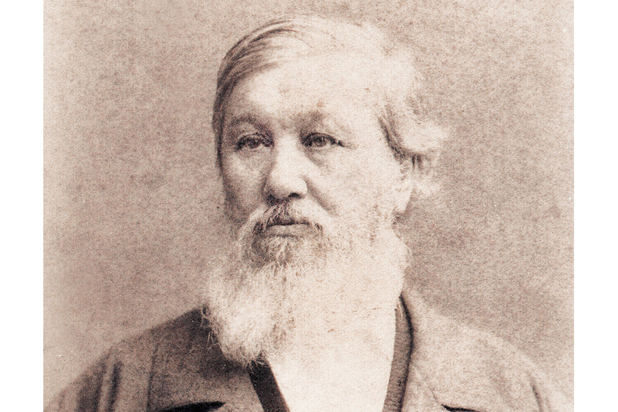 Николай Яковлевич Данилевский (1822-1885)