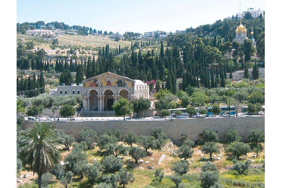 Общий вид на Гефсиманию, Масличную (Елеонскую) гору и долину Кедрон