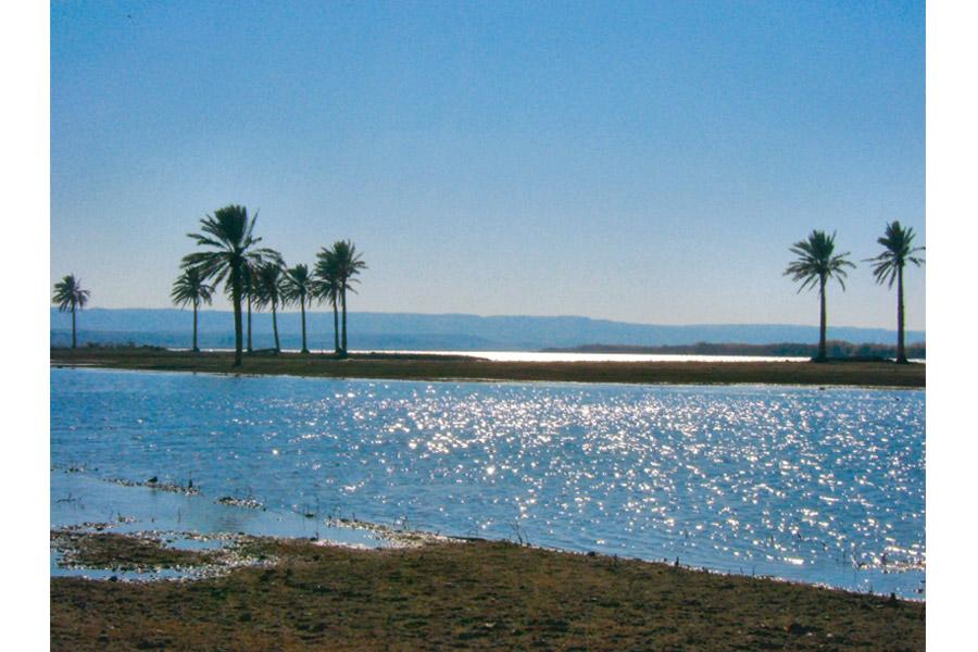Река Евфрат. На ее берегах совершились многие библейские исторические события