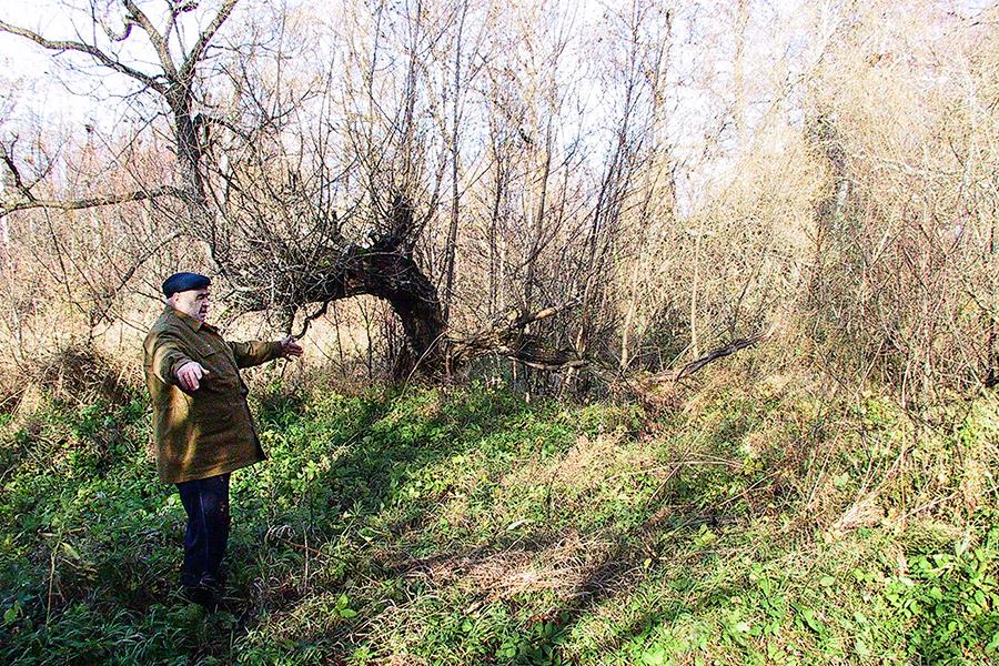 Уроженец села Покровского В.М. Зайцев показывает, где была церковная сторожка и школа